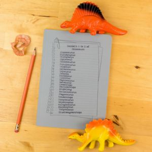 Personalised Dinosaur Notebook Personalised A To Z
