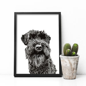 Hand Drawn Pet Portrait - pet portraits