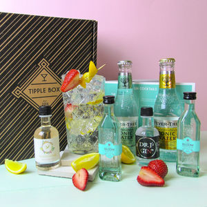 Summer Gin And Tonic Set - wines, beers & spirits