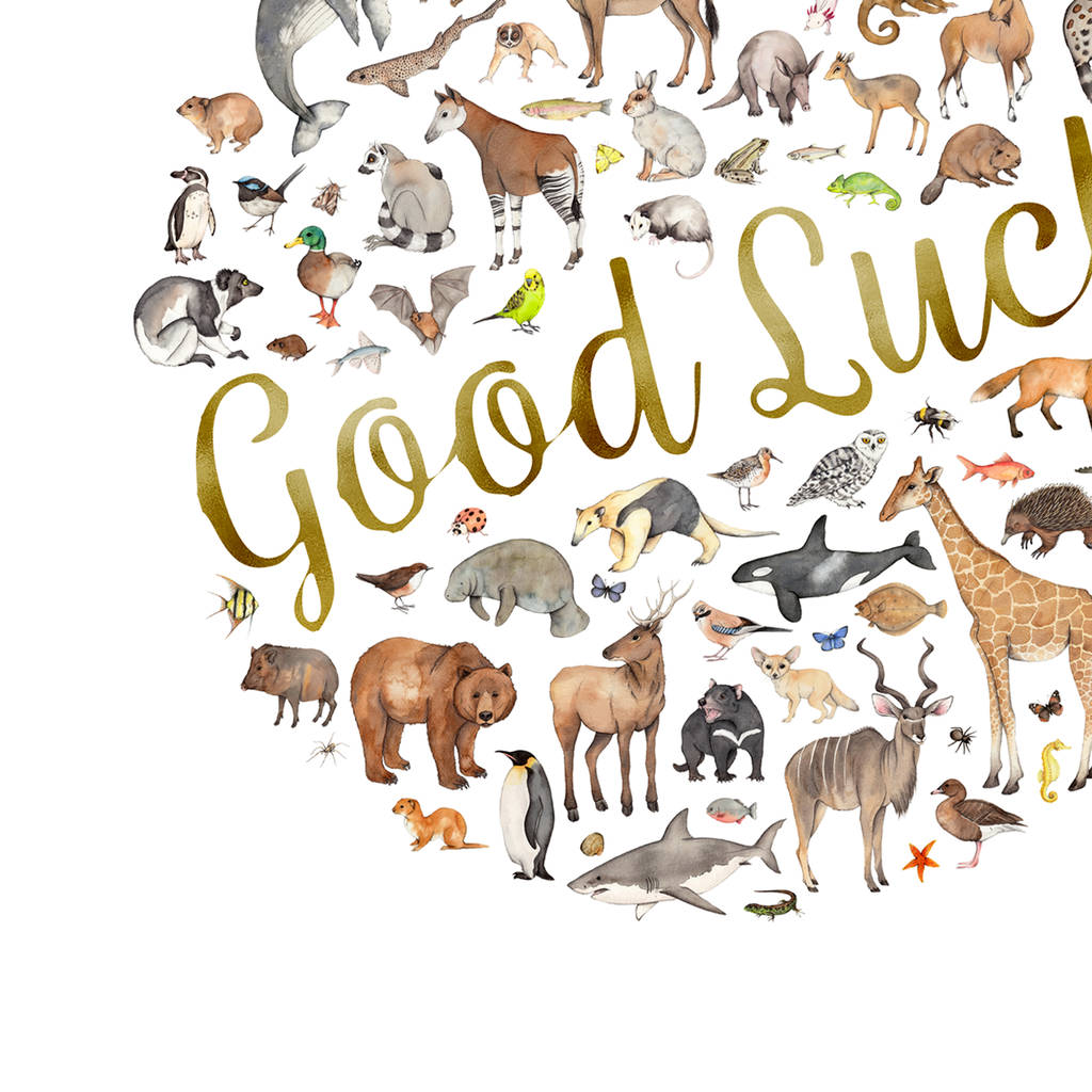 Good Luck Animal
