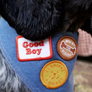 Dog Merit Badge Patches