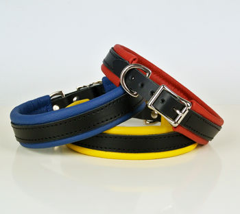 Handcrafted Padded Leather Dog Collar