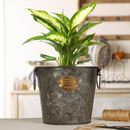 Vintage Galvanised Botanical Planter Bucket