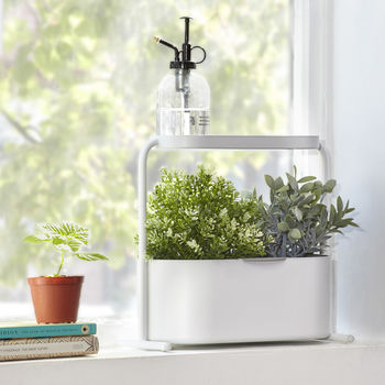 Indoor Herb And Plant Garden