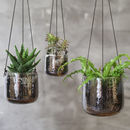 Aged Silver Hanging Planter