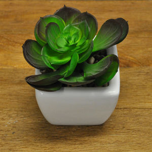 Artificial Succulent Plant And Pot - garden structures