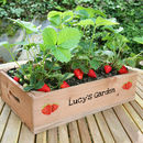 Personalised Seed Tray With Strawberry Seeds