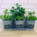 Personalised Zinc Herb Pots And Tray
