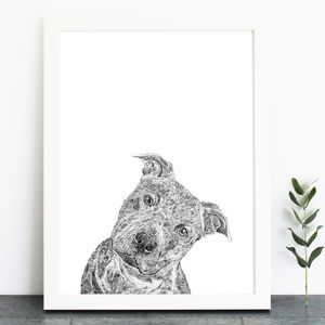 Staffordshire Bull Terrier Dog Print