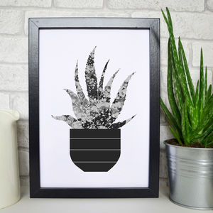 Aloe Vera Illustration Print - summer home