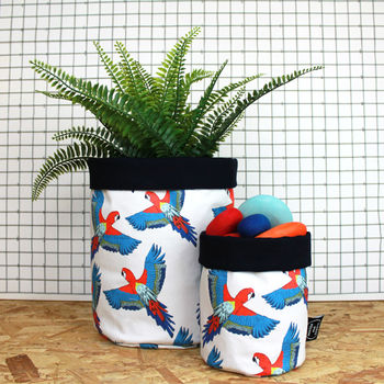 Tropical Planter