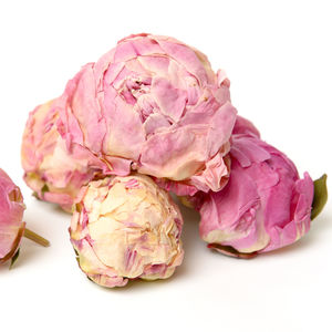 10 Peony Heads - view all new