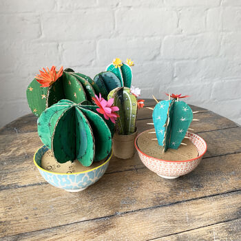 Card Cactus Making Kit