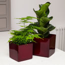 Planter No 139 Cherry Red Cube Ceramic
