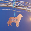 Personalised Copper Pet Christmas Decoration