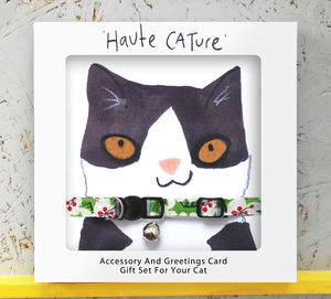 Cat Collar And Christmas Card Festive Gift Set - cards