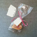 Pack Of 25 Clear Favour Bags, Tags And Ribbon