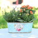 Personalised Flower Garden Windowsill Planter