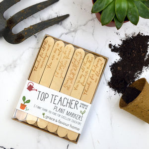Personalised Best Teacher Plant Marker Gift Set
