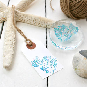 Coral Reef Clear Rubber Stamp - whatsnew