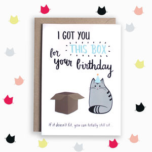 Birthday Box Cat Card - funny cards
