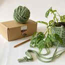 Digital Crochet Plant Pot Workshop And Craft Kit