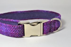 Check Harris Tweed Dog Collar - pet collars