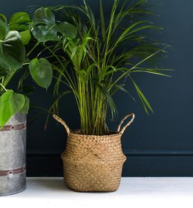 Natural Seagrass Basket Or Planter - baskets