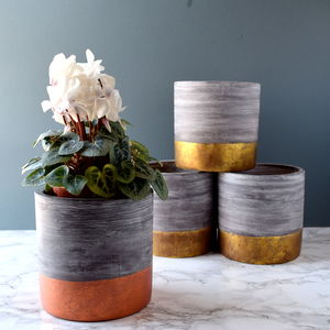 Gold Or Copper Plant Pot - pots & planters