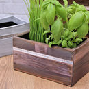 Personalised Wooden Herb Planter With Growing Kit