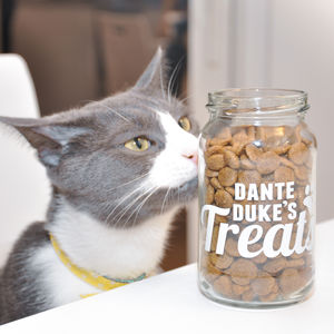 Personalised Cat Treats Storage Jar