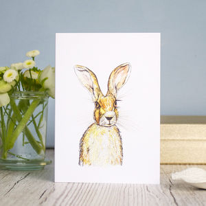 Wild Hare All Occasion Greeting Card