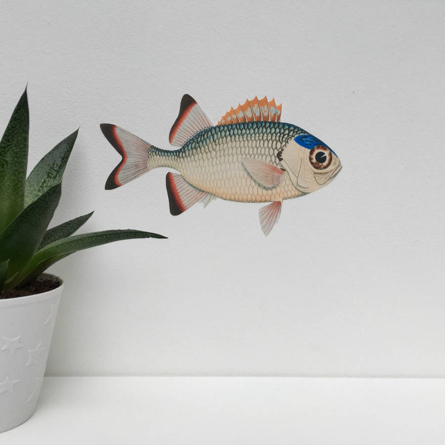 Soldierfish Fabric Wall Sticker