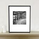 Trees, The Peak District, Art Print