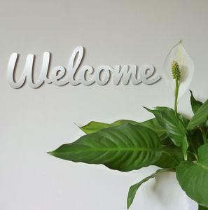 Stainless Steel Welcome Sign