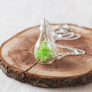 Mini Terrarium Moss Necklace