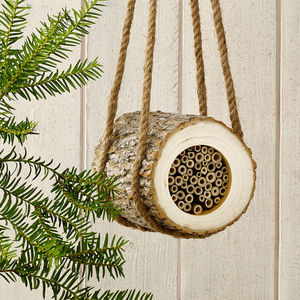 Natural Wood Bee Log And Wildflower Seed Set - gifts for grandparents