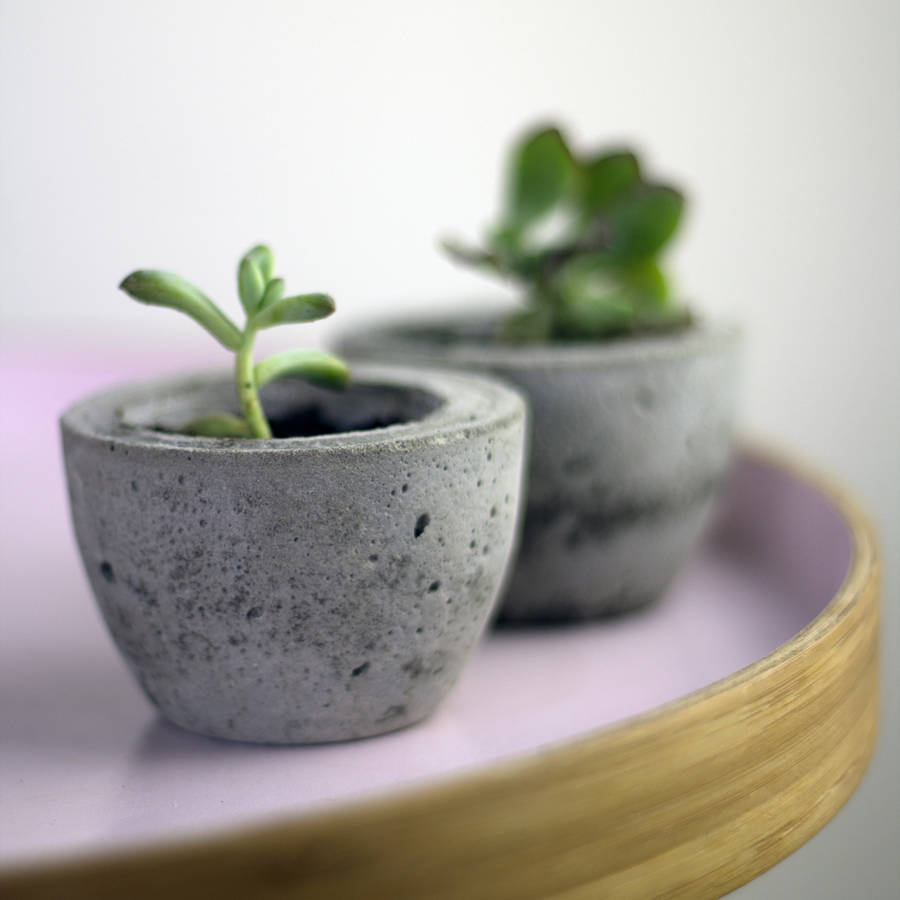 Mini Concrete Planters : Set of two mini concrete planters by bells and whistles