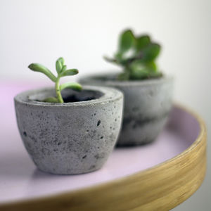 Set Of Two Mini Concrete Planters - gifts for women