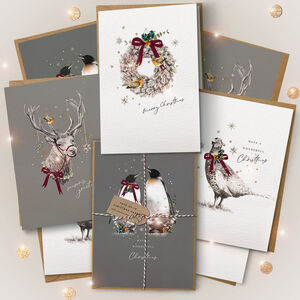 Pack Of Winter Wildlife Christmas Cards