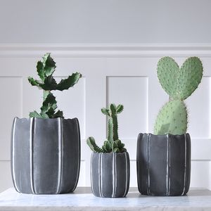 Aar Ceramic Plant Pot