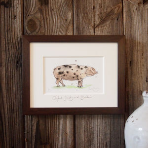 Limited Edition Pig Print. Oxford Sandy And Black - paintings