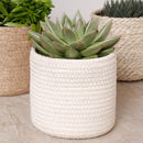 Rope Weave Plant Pot Collection