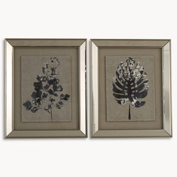 Lexington Set Of Two Framed Plant Wall Art
