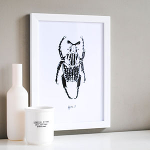 Beetle Illustration Print