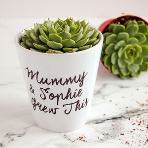 Personalised 'Grew This' Plant Pot - pots & planters