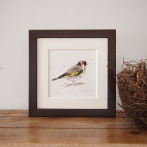 Limited Edition, Garden Bird Print, Goldfinch
