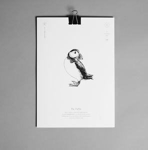 Puffin Print - animals & wildlife