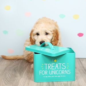 Personalised 'Treats For Unicorns' Pet Food Tin - food, feeding & treats