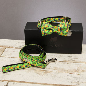 The Alderley Pineapple Dog Collar Bow Tie And Lead Set - dogs